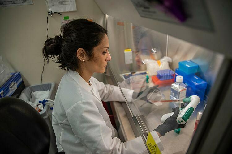 Bác sĩ Miorin chuẩn bị mẫuthửtại Trường Y khoa Icahn ở Mount Sinai. Ảnh: NY Times