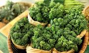 Thực phẩm nguồn gốc thực vật hỗ trợ chống ung thư