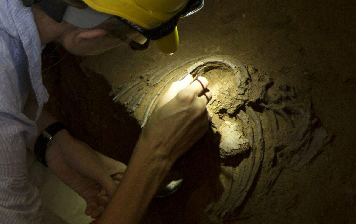 Một nhà nghiên cứu khai quật được hài cốt người Neanderthal, năm 2019. Ảnh: NY Times