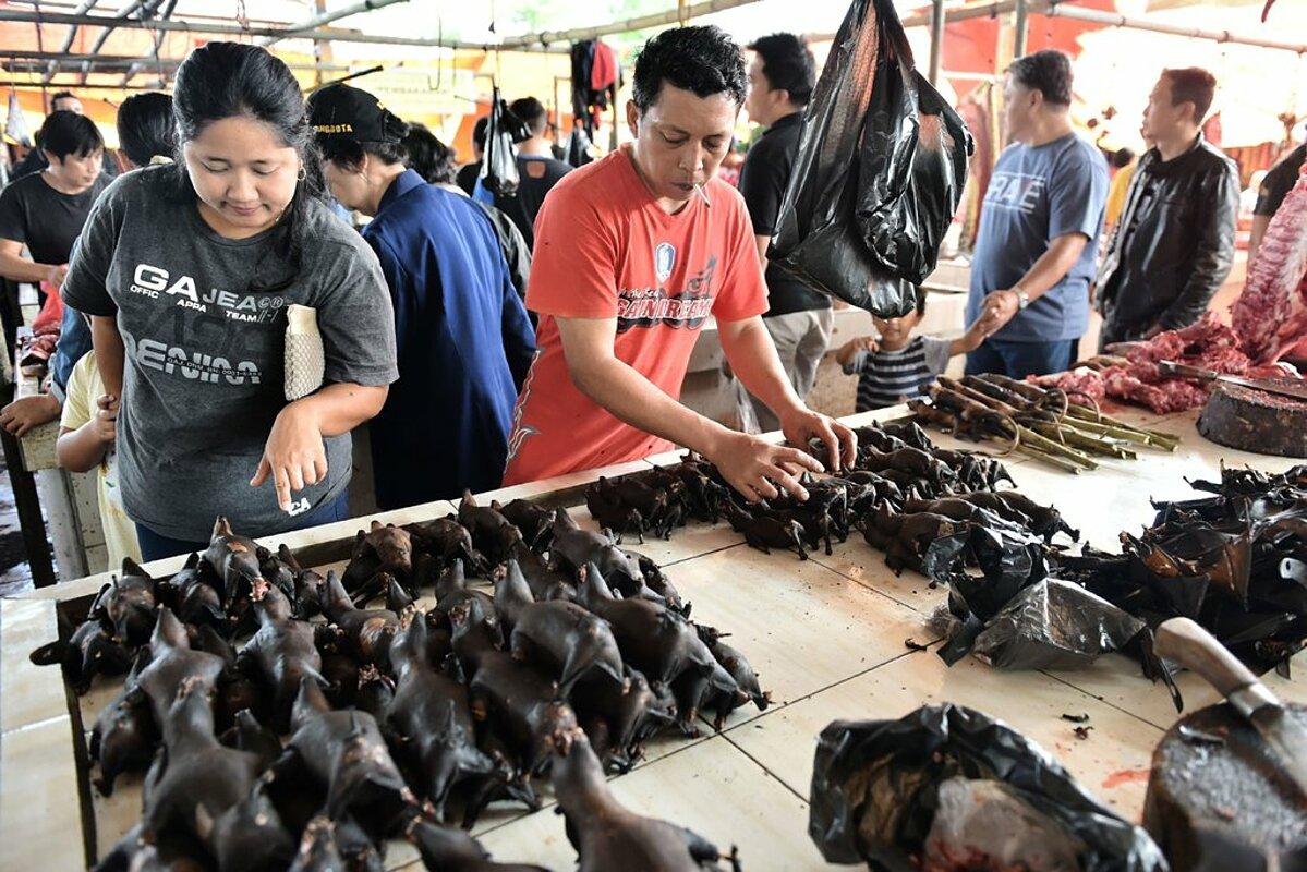 Người dân xếp hàng mua thịt dơi tại một khu chợ ở Indonesia, năm 2017. Ảnh: AFP