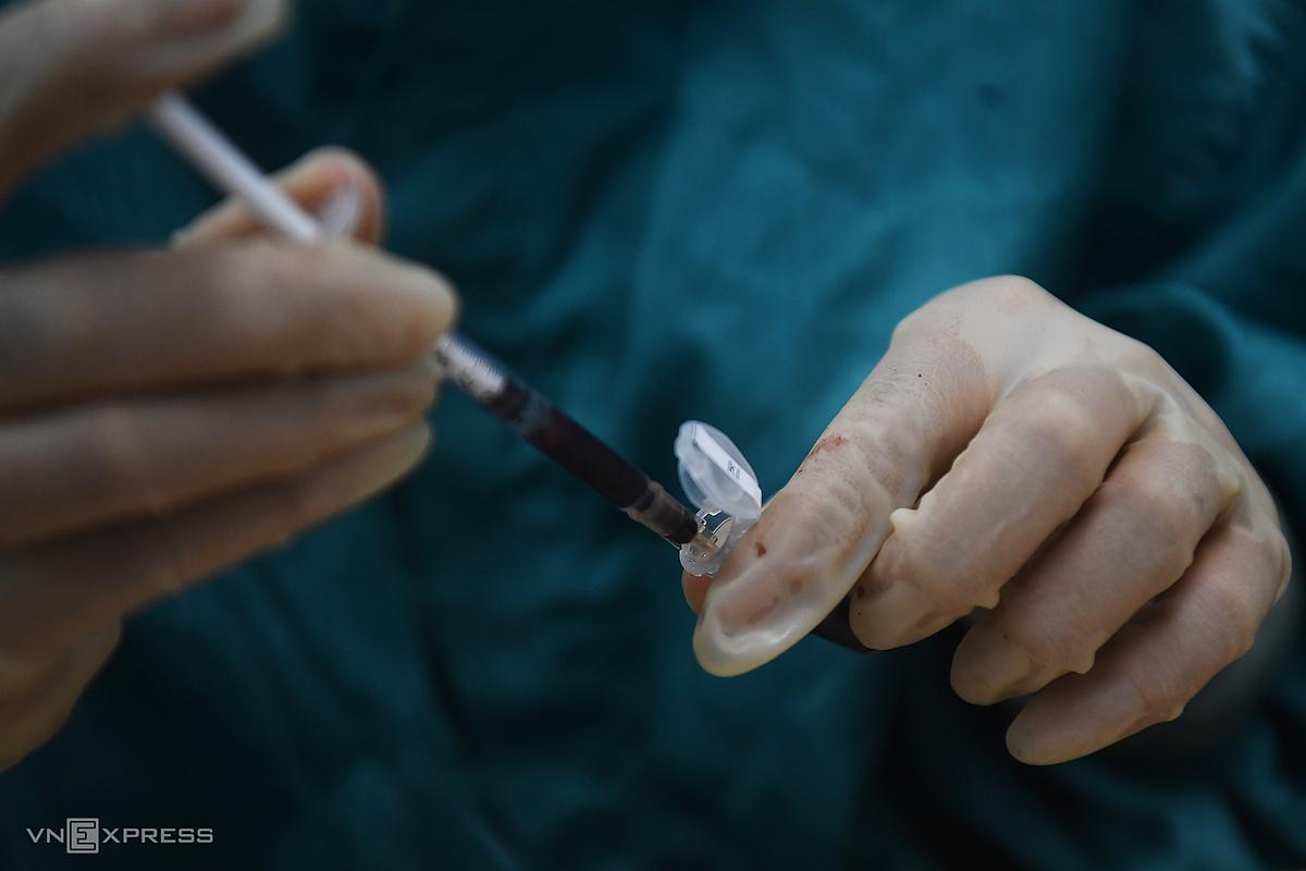 Mẫu máu chuột thí nghiệm thử dự tuyển vaccine Covid-19. Ảnh: Giang Huy.