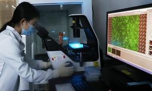 Vaccine nCoV Singapore sắp thử nghiệm giai đoạn cuối