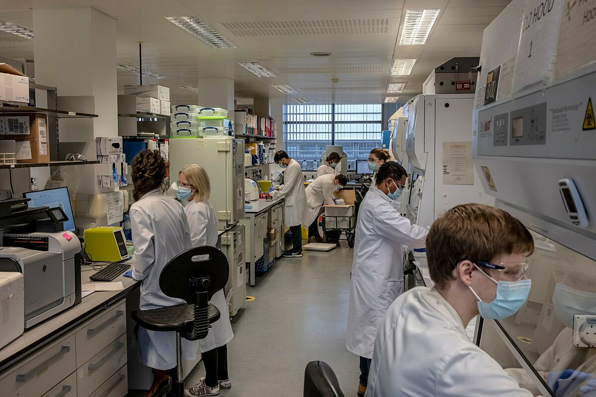 Các nhà khoa học tại Viện Jenner, Đại học Oxford nghiên cứu về vaccine. Ảnh: NY Times