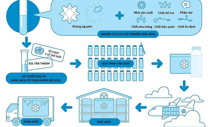 Quá trình kiểm tra chất lượng, phân phối vaccine
