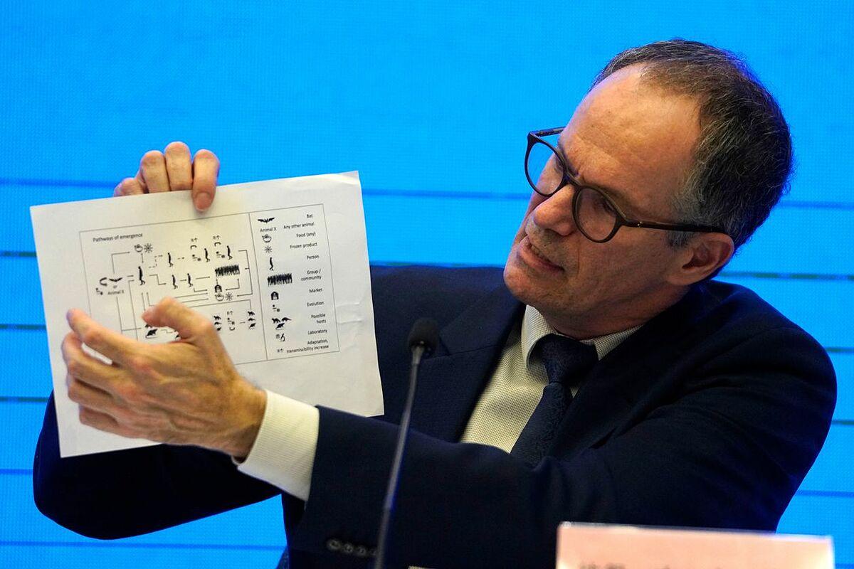 Peter Ben Embarek, trưởng phái đoàn WHO đến Trung Quốc giải thích biểu đồ lây nhiễm của nCoV. Ảnh: AP