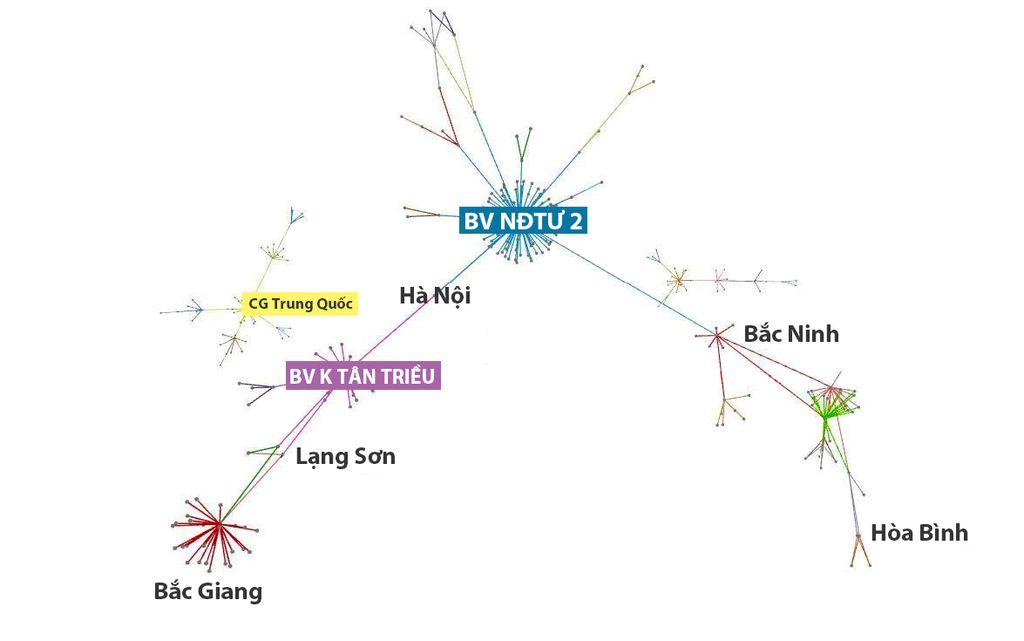 Biểu đồ 1:  5 vòng của chuỗi lây nhiễm Covid-19 từ Bệnh viện Nhiệt đới trung ương (27/4 - 11/5/ 2021)