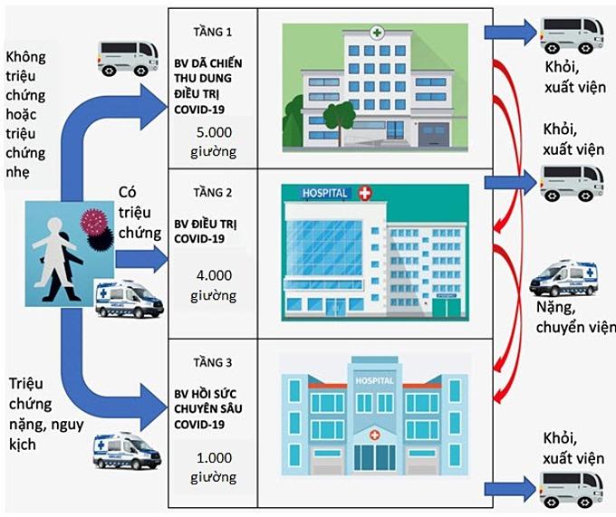 Các loại hình xe vận chuyển tương ứng với tình trạng của người bệnh và các cơ sở điều trị Covid-19 theo mô hình tháp ba tầng, Sở Y tế hướng dẫn sử dụng cá