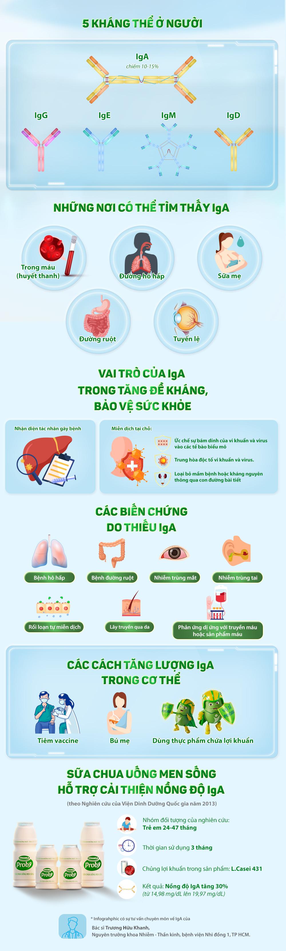 Tăng đề kháng bằng cách tăng nồng độ kháng thể IgA. Infographic: Trịnh Hằng
