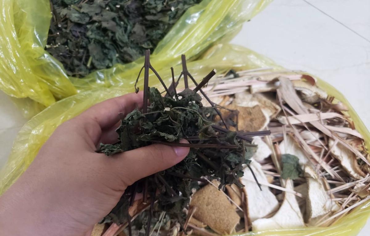 Một số người dân phơi khô tía tô, vỏ bưởi, hương nhu, sả... để dùng xông lâu dài. Ảnh: Thư Anh