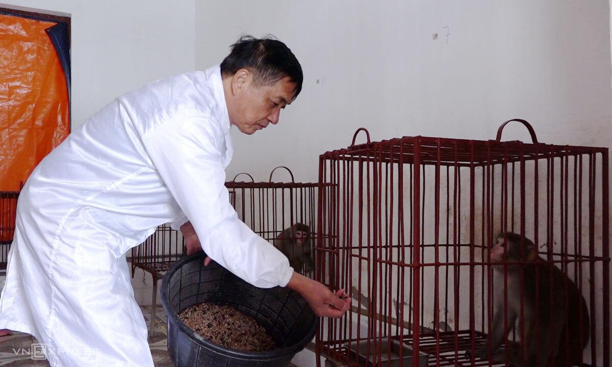 Ông Vũ Công Long cho khỉ đã tiêm vaccine Covid-19 ăn trưa. Ảnh: Anh Phú.