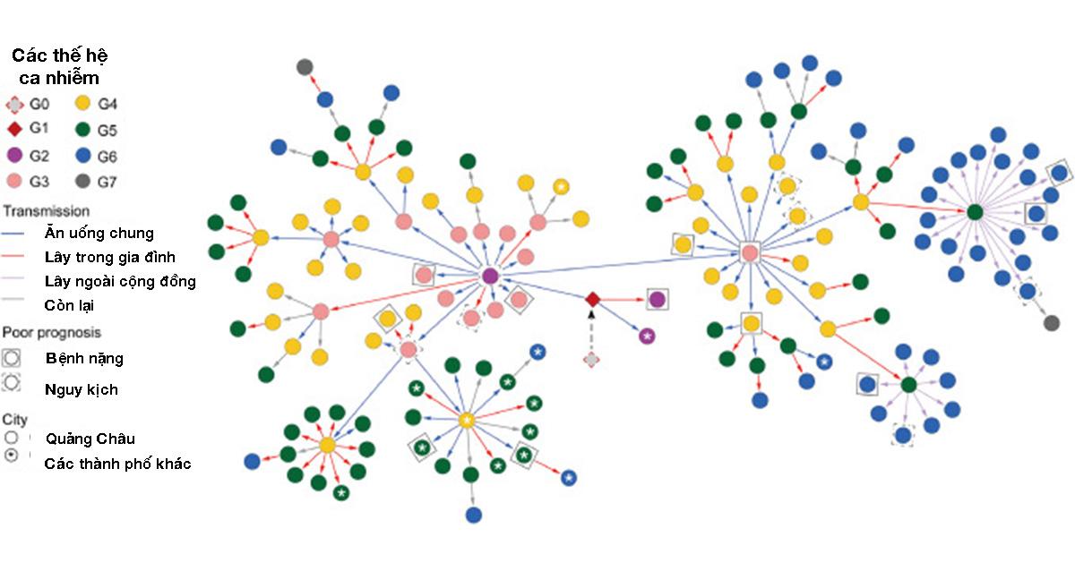 Bản đồ đường lây nhiễm biến thể Delta được công bố trên tạp chí y khoa EClinicalMedicine (G0, G1, G2,... tương ứng với F0, F1, F2,...) Ảnh: EClinicalMedicine