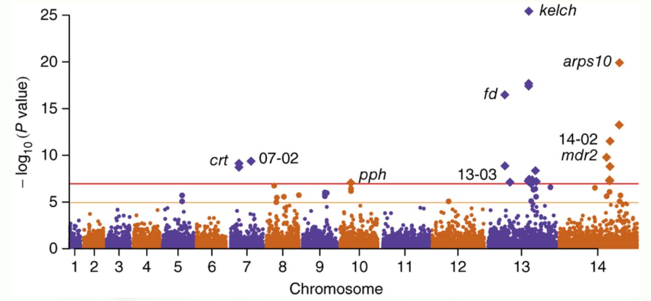 Biểu đồ về tình trạng kháng thuốc Artemisinin. Nguồn: cấu trúc di truyền của Plasmodium falciparum kháng artemisinin, Nature Genetics 47.